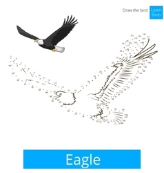 Eagle bird learn to draw Royalty Free Vector Image