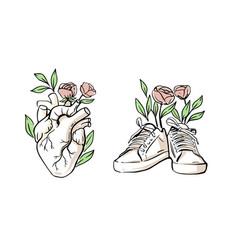 Human heart hand drawn sneakers vector