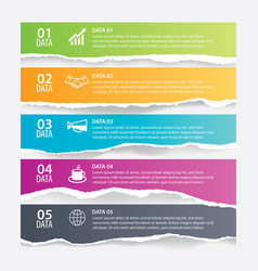 infographics torn paper in horizontal with 5 data vector image