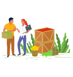 Picking apples in container local fruit vector