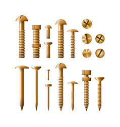 Set of fasteners golden color vector