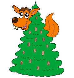 squirrel on coniferous tree vector image