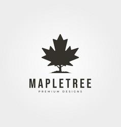 vintage maple tree icon logo symbol design vector image