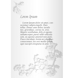 Peonies text frame grey vector image vector image