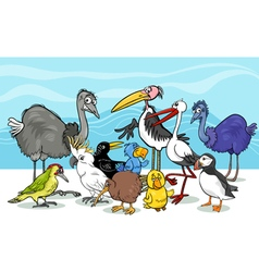Birds group cartoon vector