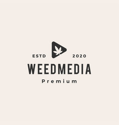 cannabis weed media hipster vintage logo icon vector image