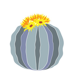 cartoon round cactus isolated vector image