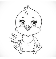 cute bachick sit on a white background vector image