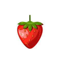 fresh juicy fruit berry - cherry icon vector image