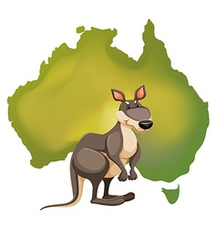 Kangaroo and Australia map vector