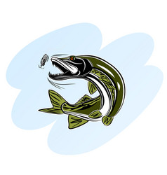 pike attack bait vector image