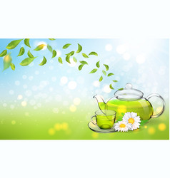 Procurement for the brochure of chamomile tea with vector