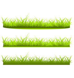 Set a variety grass on white background vector