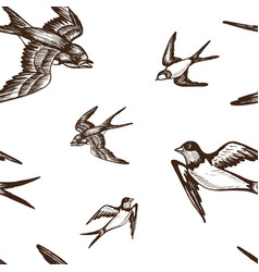 Sketch swallow pattern bird vector