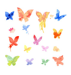 Watercolor butterfly drawing vector