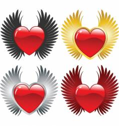 winged hearts vector image