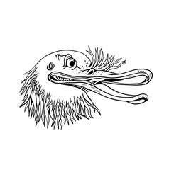 angry kiwi bird head cartoon black and white vector image