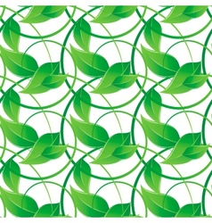 Branch with green leaves vector image