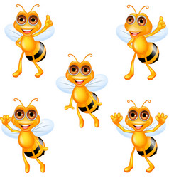 Cartoon bee collection set vector