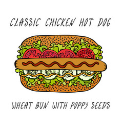 classic chicken hot dog on a sesame bun with vector image