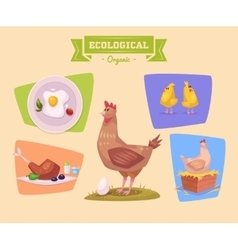 Farm animal and products made out of them chicken vector