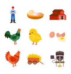 Isolated object farm and poultry sign set of vector