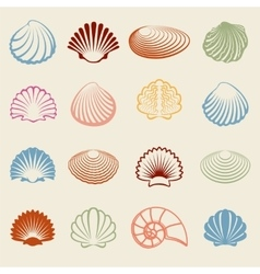 Colorful sea shells silhouettes set vector image