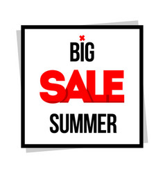 big sale special offer vector image
