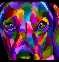 close up of face dachshund vector image