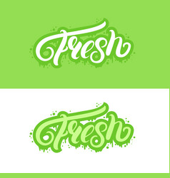 fresh hand written lettering text vector image