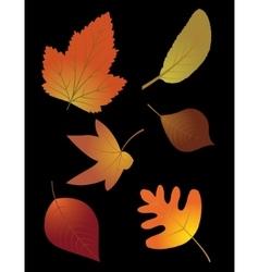 Autumn leaves set on black background vector image vector image