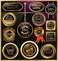 Elegant design Premium quality vector image vector image