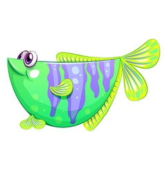 A unique fish vector image