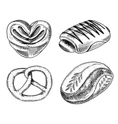 Bread and pastry donut sweet bun or bagels vector