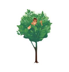 cartoon man hiding in a tree summer nature vector image