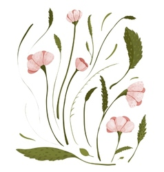 Spring Flowers Collection vector image