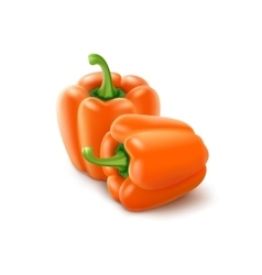 Two Orange Sweet Bulgarian Bell Peppers Paprika vector