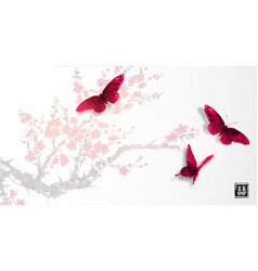 sakura in blossom and three big red butterflies vector image vector image