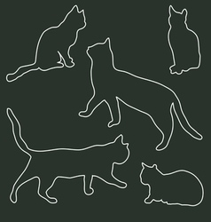 A collection of cats contour vector image vector image