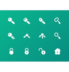 Key icons on green background vector image