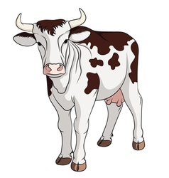 Colored cow vector image