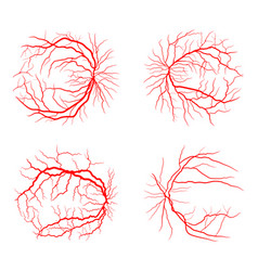 Eye vein set system x ray angiography design vector