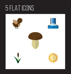 Flat icon natural set of bird cascade cattail vector