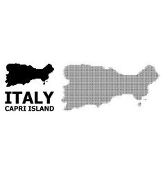 Halftone pattern and solid map capri vector