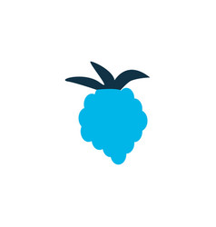 Raspberry icon colored symbol premium quality vector