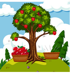 Red apple tree in the field vector