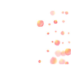 Rose gold petals flying cosmetics background vector