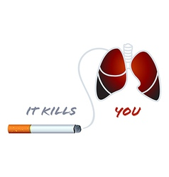 smoking kills vector image
