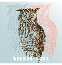 stereo owl vector image