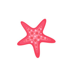 summer sea creature tropical starfish isolated vector image